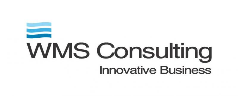 WMS Consulting Ltda.